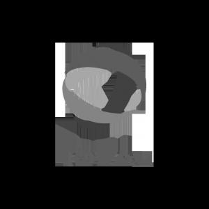 logo-total-gris
